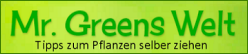Mr. Greens Welt